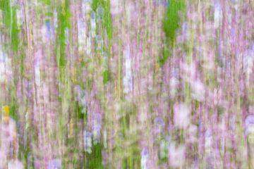 Monet von Marion Raaijmakers