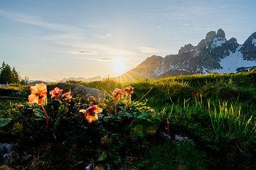 """Berglandschap """"Zonsondergang met rozen"""" van Coen Weesjes"""
