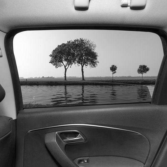 Bomen door de auto