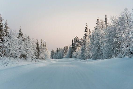 Finland midwinter