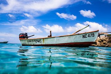 Curacao pelicaan vissers boot van Roel Jungslager