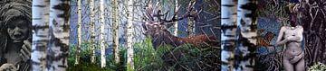Het woud ontwaakt van Terra- Creative