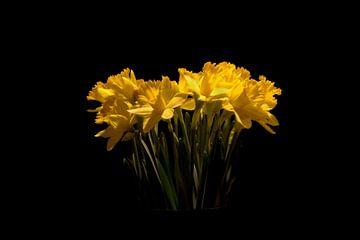A flower in the dark van wouter De Prins