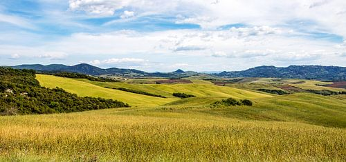 Toscane - Omgeving pisa
