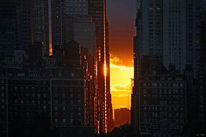 new york city ... golden light van
