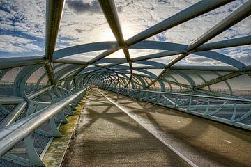 Fietsbrug  De Netkous  in Rotterdam in HDR van W J Kok