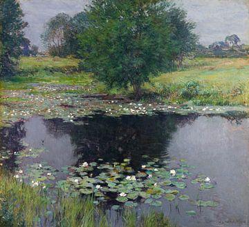 Lys d'étang, Willard Metcalf sur