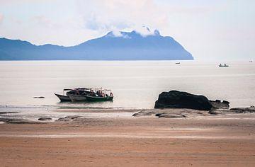 Uitzicht vanaf het strand van het Bako nationaal park Borneo van Nannie van der Wal