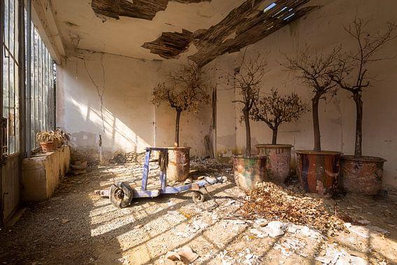 Verlaten Serre in Klooster. van Roman Robroek