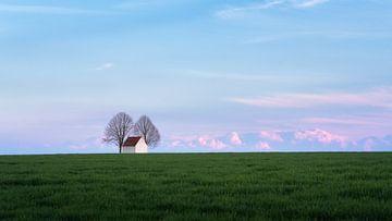 Kapel in het veld van Simon Bregman