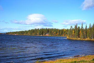 Schoonheid in de natuur van Zweden van Thomas Zacharias