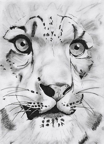 Tiger van Debby Saat