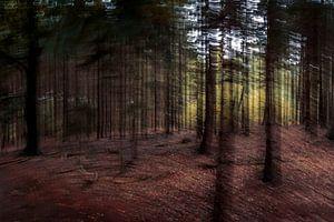 Dansende bomen van Robbert Ladan