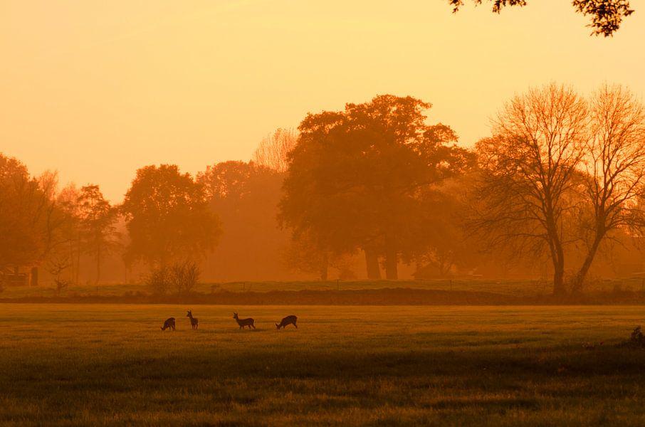 Deer Spotting II van Stephan Smit