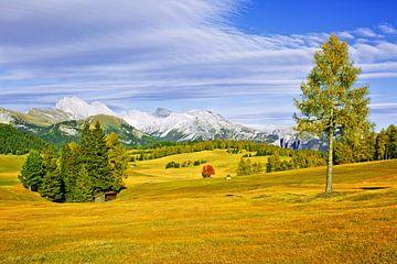 Alpe di Siusi in Autumn - Another Version van Gisela Scheffbuch
