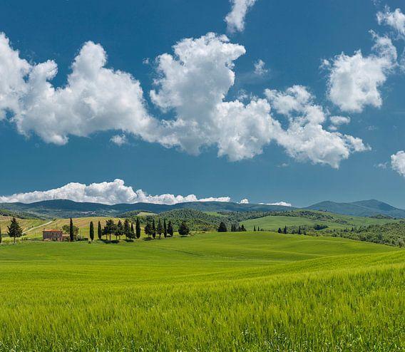 Val d'Orcia, Contignano, Toscane, Italië
