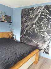 Klantfoto: Cactus of Algarve, zwart-wit foto van Antoine Ramakers, als behang