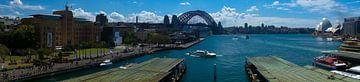 Sydney Harbour and Circular Quay Panorama van Tessa Louwerens