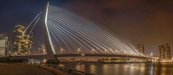 Een Panorama van de Erasmusbrug met mist RawBird Photo's Wouter Putter