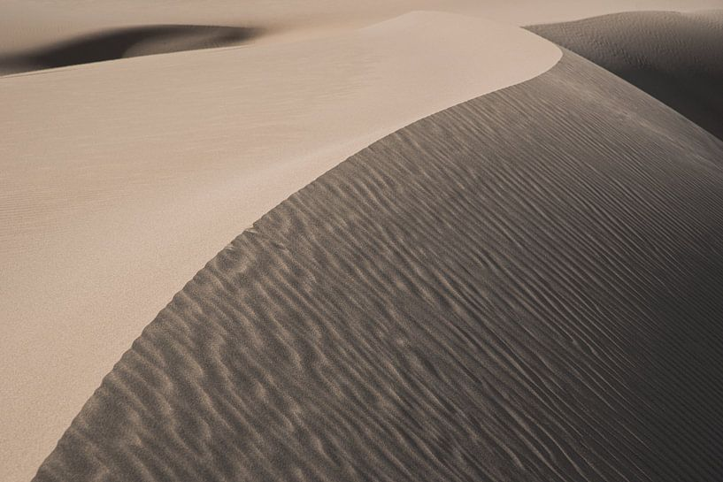 Bruine zandduin met licht en schaduw in de woestijn   Iran van Photolovers reisfotografie