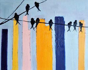 Birds in the city