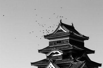 Matsumoto kasteel van Bas Rutgers