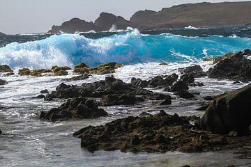 Wellenförmige Nordküste Aruba von Ruurd van der Meulen