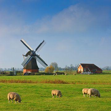 """Windmühle """"De Jonge Held"""", Leegkerk, Groningen, Niederlande"""