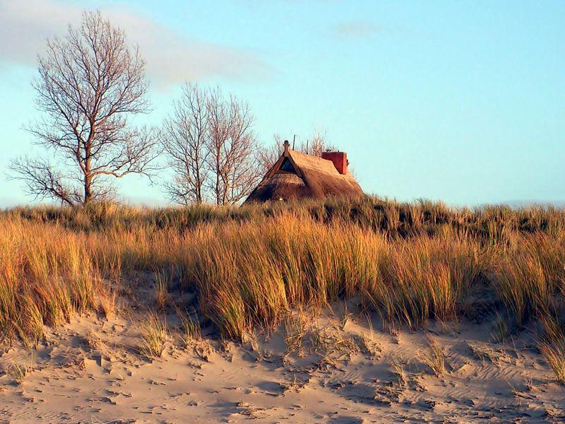 Dünenlandschaft an der Ostsee in Wustrow van Renate Knapp