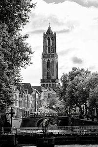 Domtoren Utrecht gezien vanaf de Bemuurde Weerd (2)