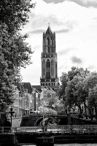 Domtoren Utrecht gezien vanaf de Bemuurde Weerd (2)  van