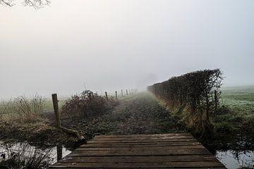 Nebel in Vorden von Tim Voortman