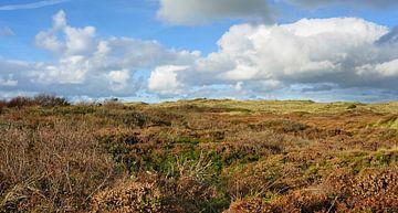 Texel - Nationaal Park Duinen van Texel von foto zandwerk