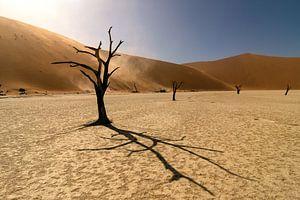 Deadvlei in Namibie van
