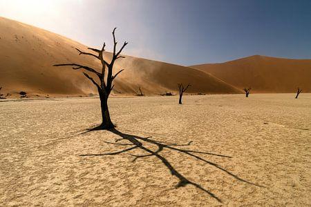 Deadvlei in Namibie