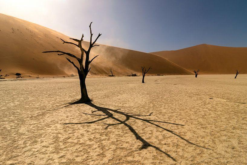 Deadvlei in Namibie van Monique Landman
