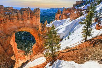 Winter bij de natuurlijke brug in Bryce Canyon Nationaal Park, Utah van Henk Meijer Photography