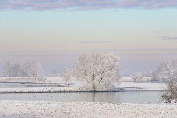 Winters rivierlandschap aan de IJssel met een kleurrijke lucht van