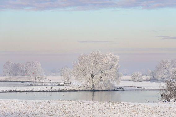 Winters rivierlandschap aan de IJssel met een kleurrijke lucht
