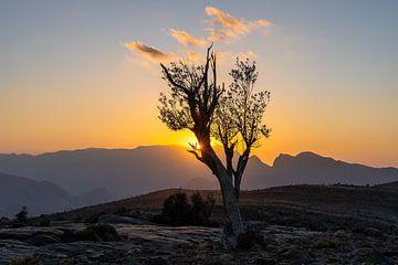 Van zonsondergang tot zonsondergang van Jeroen Kleiberg