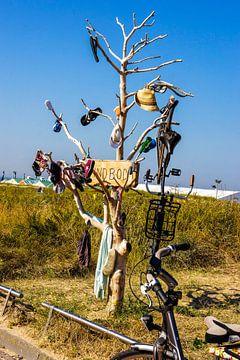 Vindboom in Noordwijk van Remco de Zwijger
