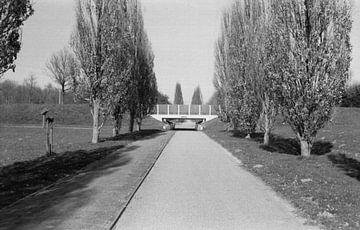 Een brug met wat bomen van Melvin Meijer