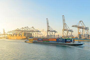Binnenschip dat de containerschepen passeert op de containerterminal in de haven van Rotterdam van Sjoerd van der Wal