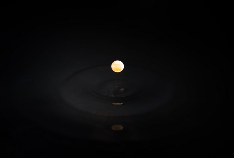 Donkere bol van Dennis van de Water