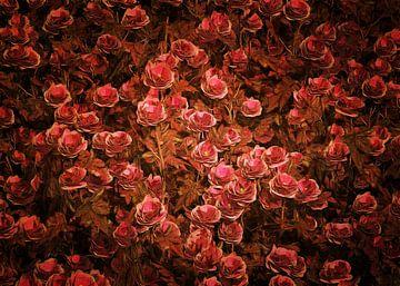 Rozen - Roze Bionica-rozen