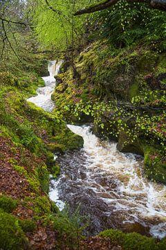 Schnellfließender Fluss am Arran von Johan Zwarthoed