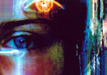 Zoë's oog. van Marianne de Wit-Koenen