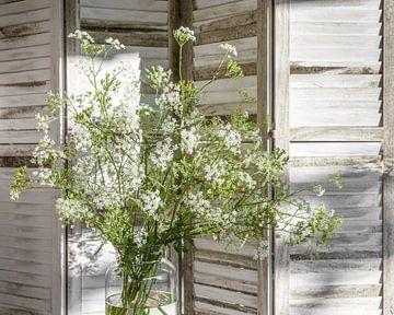 Wilde bos wit bloeiend fluitenkruid tegen wit kamerscherm met louvre panelen van Mayra Pama-Luiten