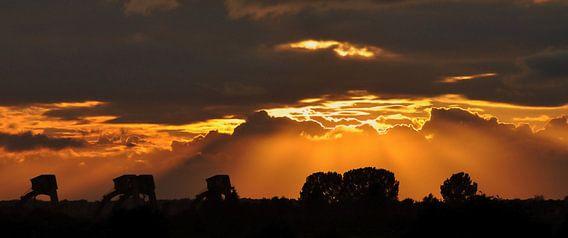 Als silhouet stuwcomplex bij Amerongen.