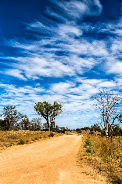 Hattah Kulkyne National Park van Joke Beers-Blom